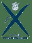 logo-ecole-polytechnique-368x500
