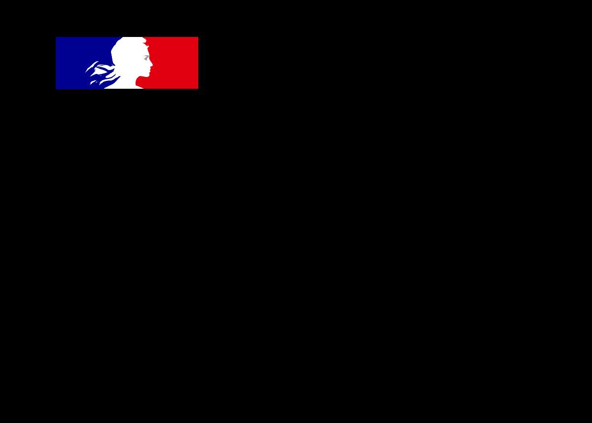 logo-ministere-sante-1200x858
